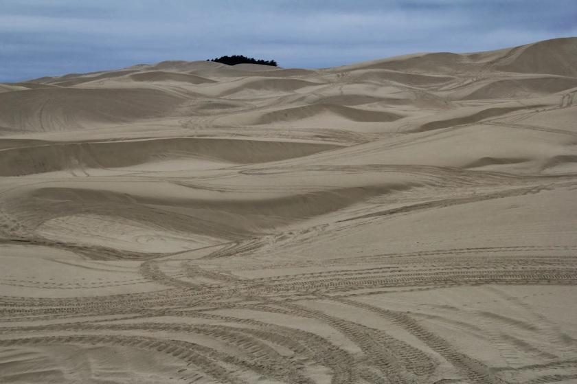 Oregon Sand thewandererschuckandkate blogspot