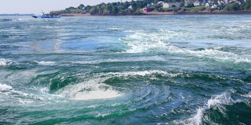 Old-Sow-Whirlpool divebuddies4life
